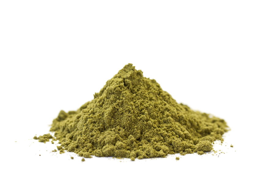 Hemp Protein vs Whey Protein: Pros and Cons